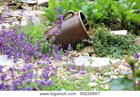 stoneware with Glechoma hederacea