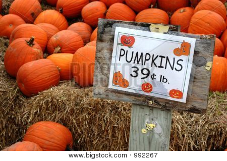 Pumpkins With Price Sign