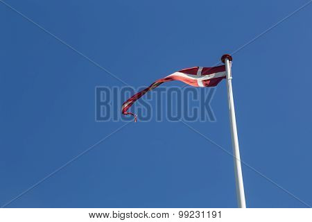 Danish Vimpel