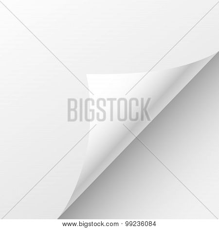 Blank Paper Sheet Curl Corner, Empty Page Bend Vector