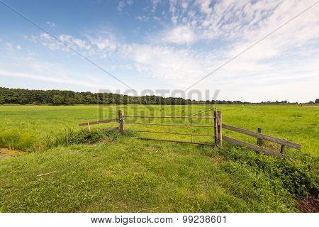 Locked Rusty Gate Before A Green Meadow In Summer Season