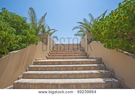 Stone Steps In A Tropical Garden