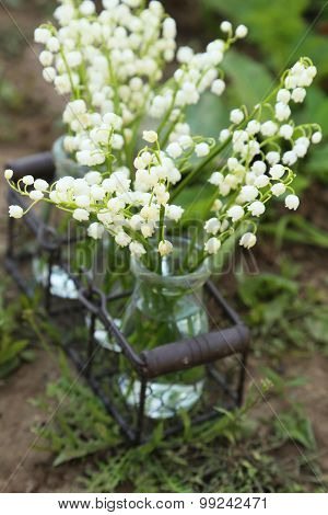 Lily Of The Valley In Bottles On Ground