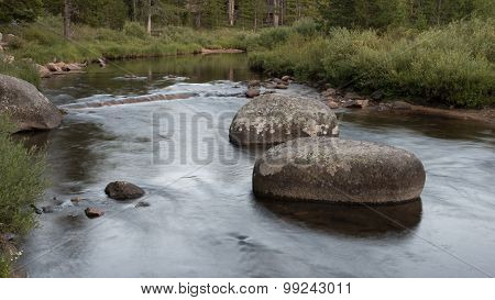 Trout Steam Blur Wyoming