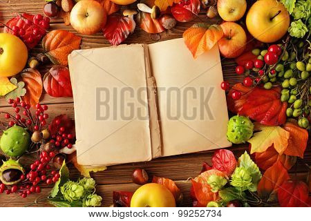open empty book and autumn background - fruits, autumn leaves