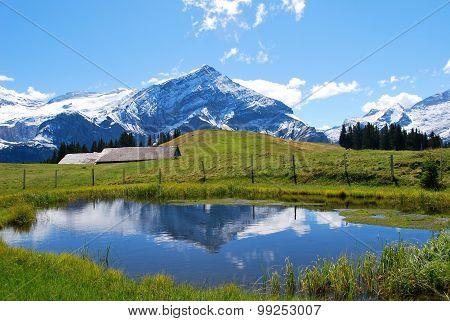 beautiful Swiss landscape in the alps