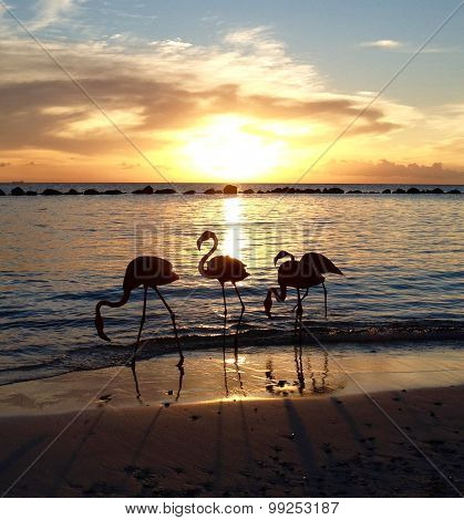 Paradise Flamingos