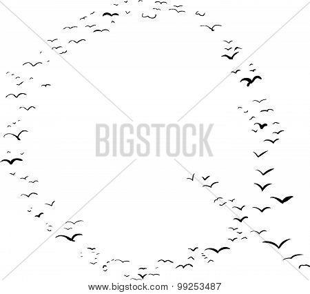 Bird Formation In Q