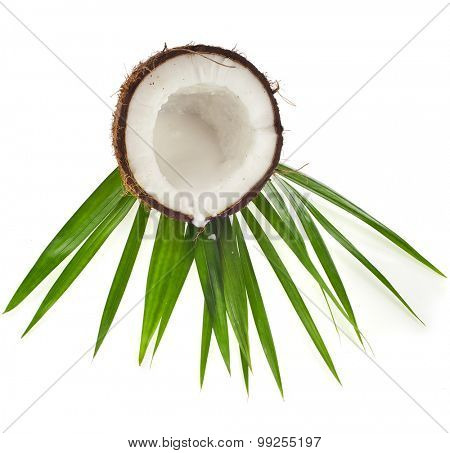 Coconuts with leaves  isolated on white background