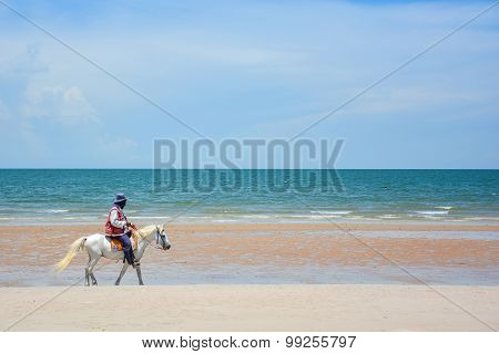 Man Riding Horse On The Beach