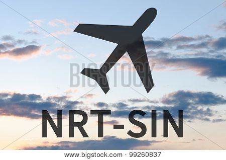 Airplane icon and inscription Sin-Nrt