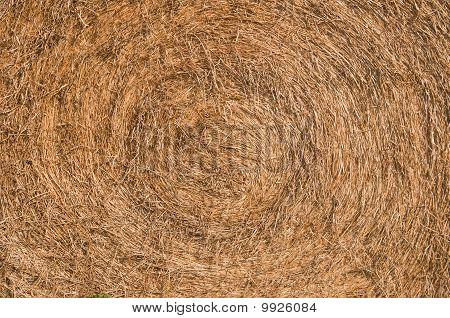 Bail Of Hay Close-up
