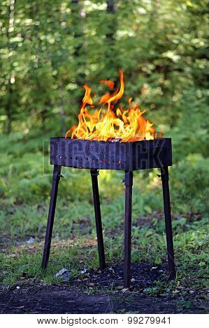 Brazier with fire. Shooting outdoors, on background of green forest.