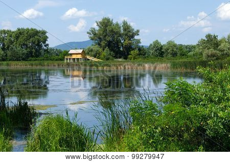 summer landscape in Hungary - a stilt house, a backwater, trees, reeds, blue sky and clouds