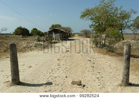 A Hut And A Dusty Road In A Tropical Landscape
