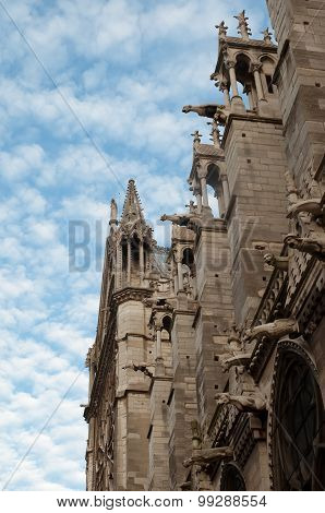 Notre Dame Cathedral, Architectural Details , Paris .