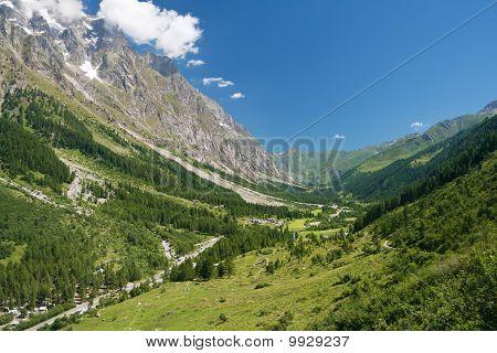Ferret Valley