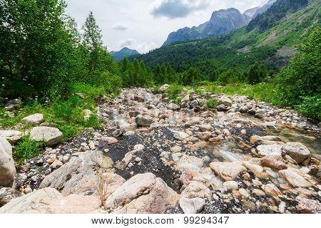 Brook In The North Caucasus.