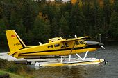 image of float-plane  - float plane moored to dock along highway 60 in algonquin park - JPG