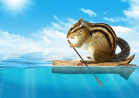 stock photo of floating  - Funny animal chipmunk floating at ocean travel concept with copy - JPG
