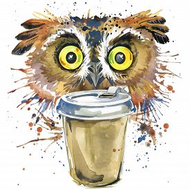 picture of owl eyes  - Coffee and owl T - JPG