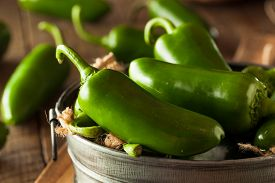 stock photo of jalapeno  - Organic Green Jalapeno Peppers in a Bowl - JPG