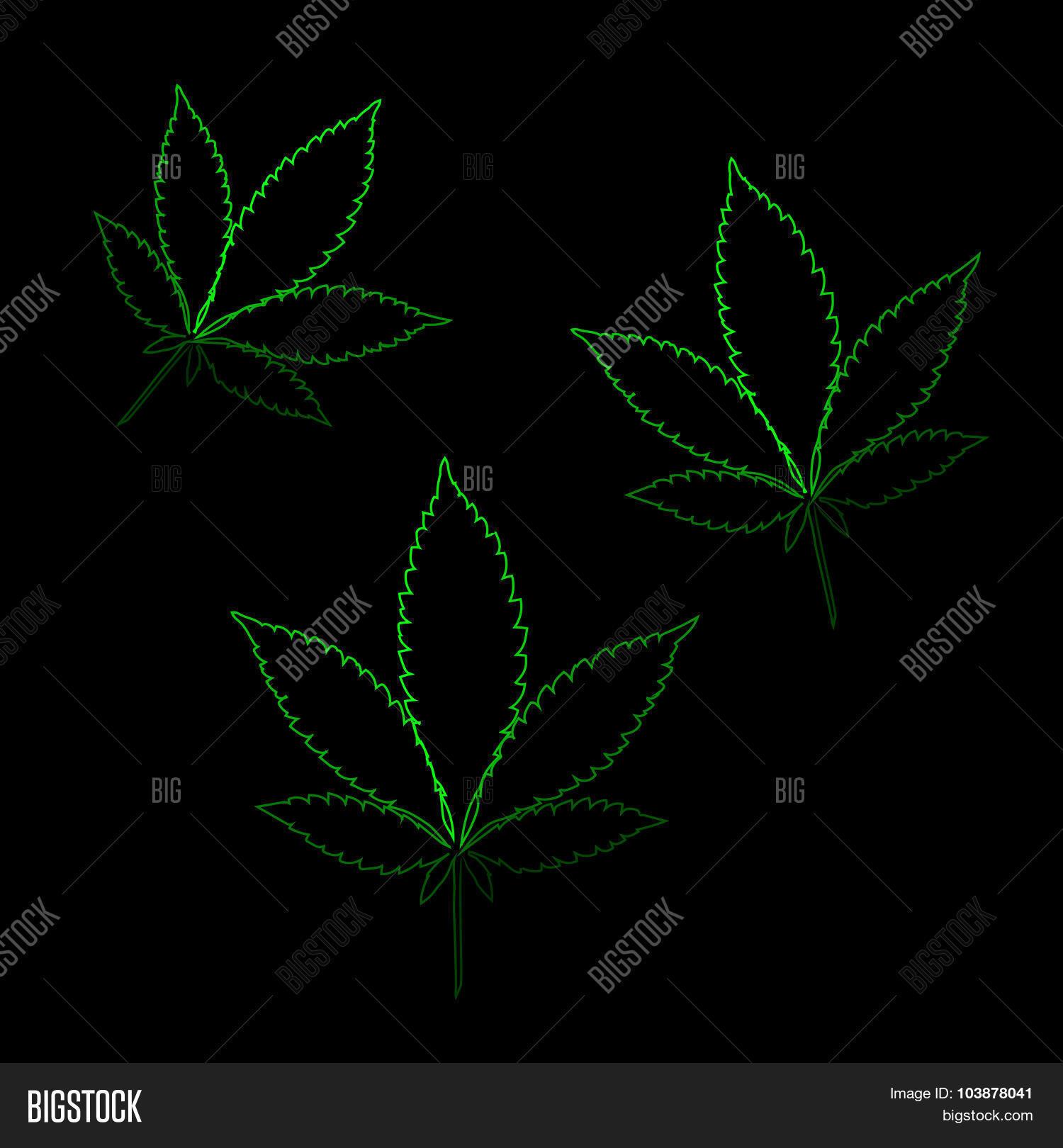 Neon Marijuana Leaves Stock Vector Stock Photos Bigstock