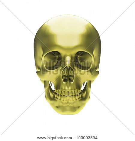 Gold metallic skull on white background