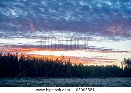 Finnish Landscape At Dawn