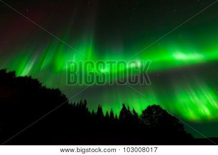Green Ribbons Of Aurora Lights