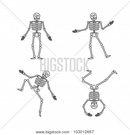Happy Halloween Skeleton Illustration