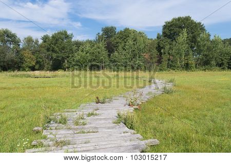 Wooden Path In Grass Field