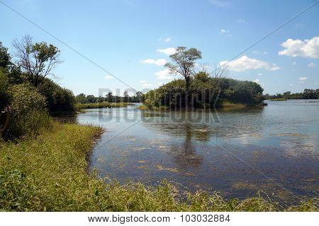 Island in Turtle Lake