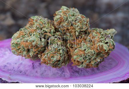 Conspiracy Kush Medical Marijuana