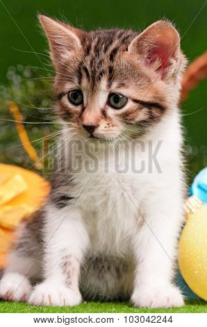 Cute kitten playing Christmas ball on artificial green grass