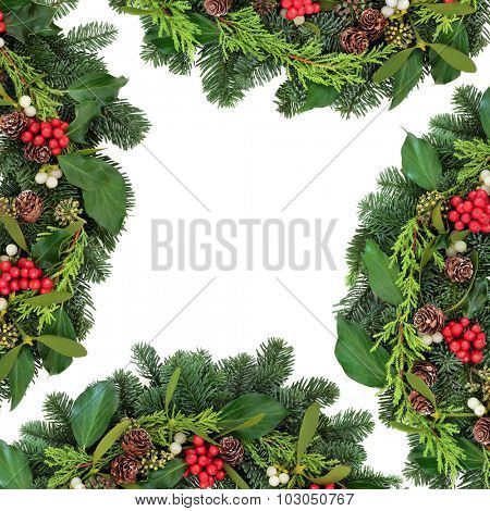 Christmas background border of holly, ivy, mistletoe, fir and winter greenery over white background.