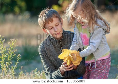 Autumn park outdoors portrait of sibling children examining light yellow armful of leaves