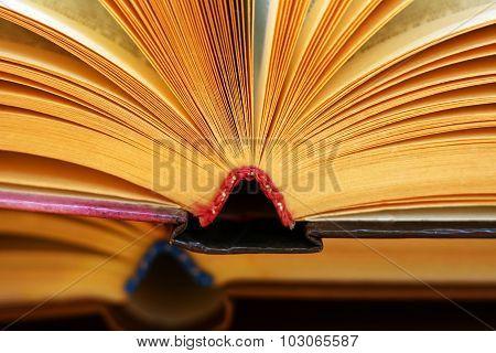 Two Books closeup