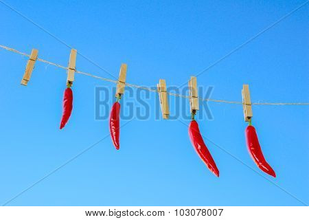 Red Chilli Peppers Hanging On A Clothesline On A Sky Background.