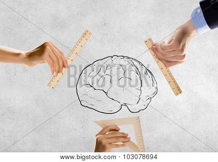 Close up of people hands measuring brain with ruler