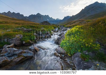 Beautiful View Of Mountain River In Summer
