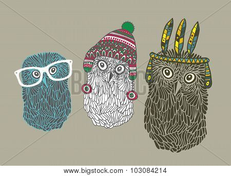 Set of three doodle owls.