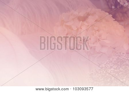 Bunch Of White Hydrangea And Feather With Soft Focus And Color Filter