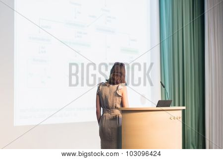 Business woman making business presentation.