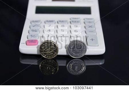 One Pound And Polish Zloty ..