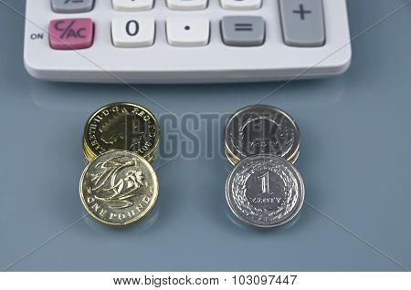 One Pound And Polish Zloty ....