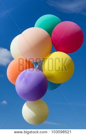 Colourful balloons filled with helium floating on blue sky background