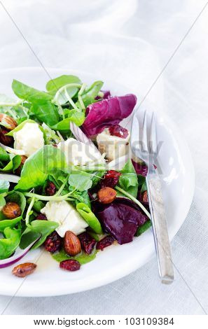 Delicious gourmet salad with cranberry, almonds and feta for a gourmet light meal lunch dinner appetiser