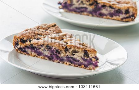 Delicious homemade sponge cake with wild blueberries