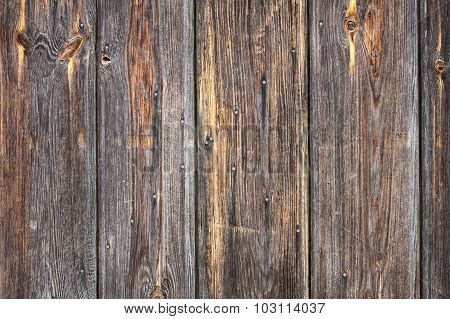 Grungy Real Spruce Wood Texture